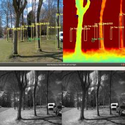 VCS-1 tree detection and NDVI computation